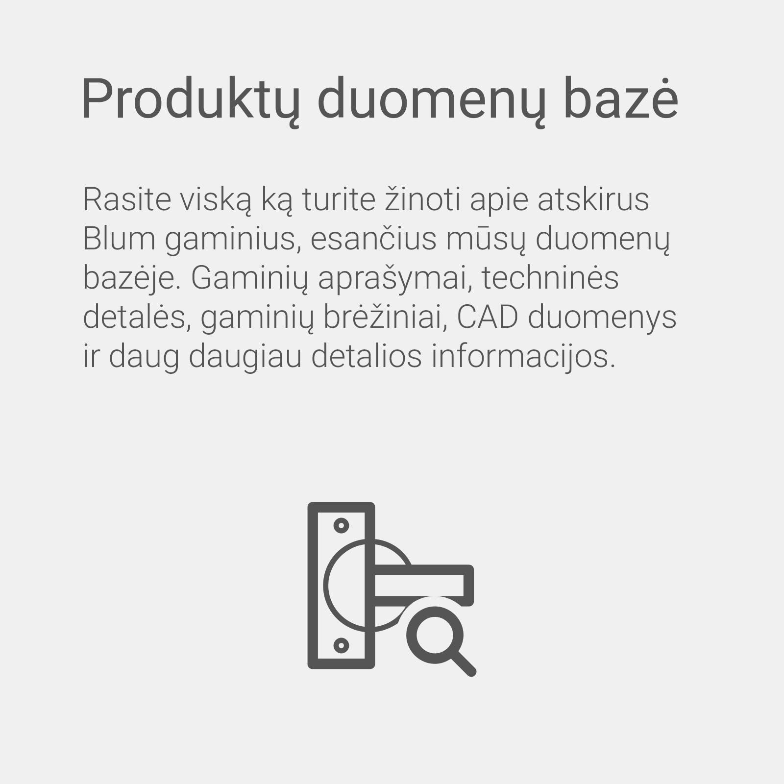 e-services_produktu_duomenu_baze